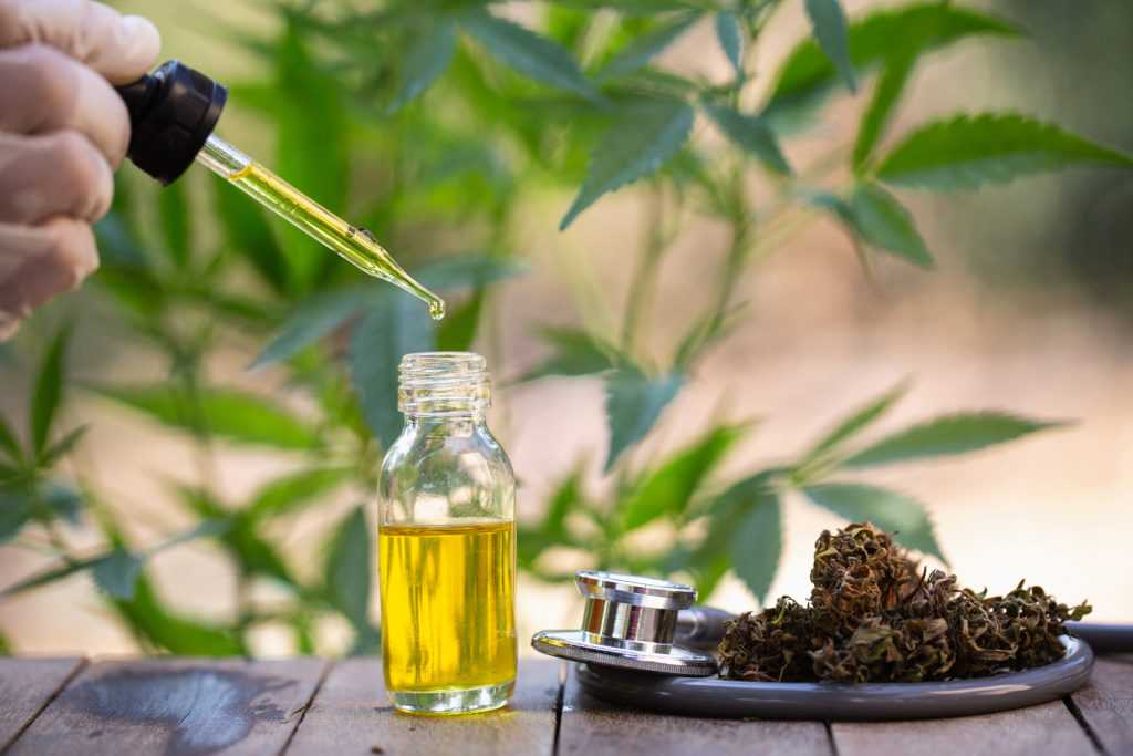 Organic CBD Oil from Hemp
