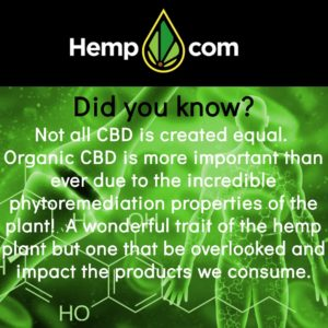 hemp phytoremediation
